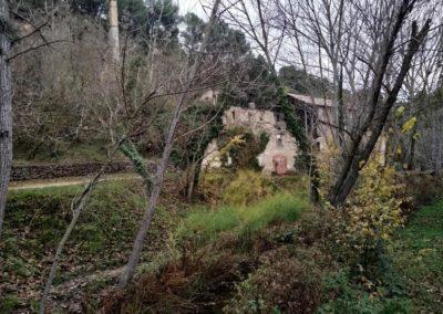 2019-11-27 Banyeres-La Blasca (130)