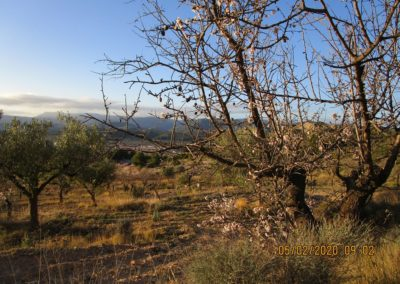 2020-02-05 Chelva-Pico del Remedio (107)