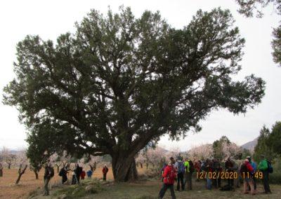 2020-02-12 La Juana-La Almeza-Arcos de la Salina (118)