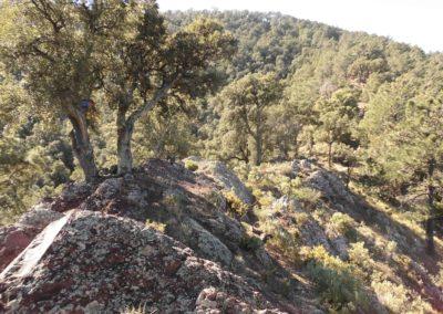 2020-03-alfondiguilla-Castell de Castro-Alfondiguilla (116)