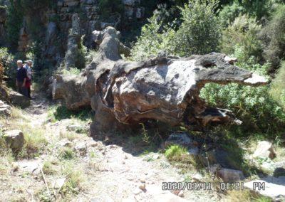 2020-03-alfondiguilla-Castell de Castro-Alfondiguilla (125)