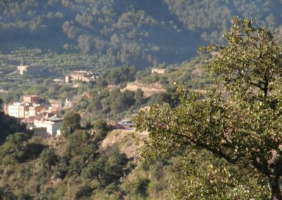 2020-03-alfondiguilla-Castell de Castro-Alfondiguilla (127)